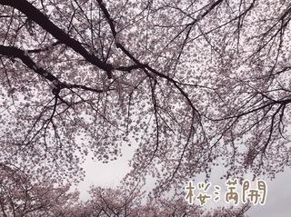 IMG_3352.JPG