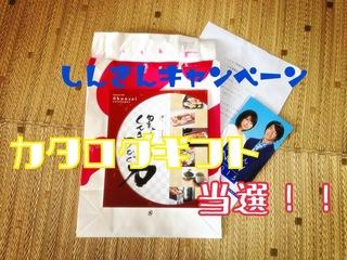 IMG_9245.JPG